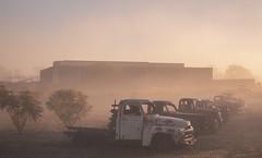IMG_4332 (alextaz2) Tags: swan valley perth australia caversham farm vintage car sunrise landscape