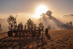 IMG_4330 (alextaz2) Tags: swan valley perth australia caversham farm vintage car sunrise landscape