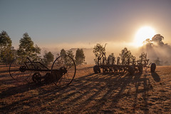 IMG_4328 (alextaz2) Tags: swan valley perth australia caversham farm vintage car sunrise landscape