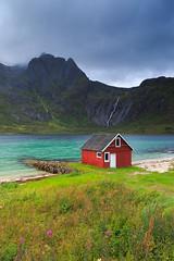 20180826-Canon EOS 6D-4940 (Bartek Rozanski) Tags: raften nordland norway cabin red rorbu lofoten mountains fjord valley tengelfjord fireweed arctic austvagoya austvågøya norge noreg