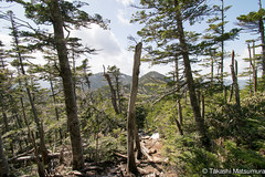 Mt Kobushi (takashi_matsumura) Tags: mt kobushi ngc mountain trekking japan nikon d5300 甲武信岳