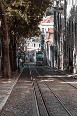 The cable car (maurusloeffel) Tags: lisbon lissabon lisboa portugal summer city tram cable car