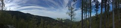 Ochsenberg (Klemens Maier) Tags: freiburg breisgau baden badenwürttemberg deutschland schwarzwald südbaden schauinsland iphone se panorama ochsenberg ramselendobel schönberg wald bäume