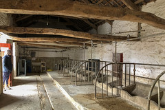 20190501 0046 Shirley Milking Parlour Llanerchaeron near Aberaeron Ceredigion SA48 8DG Mid Wales (rodtuk) Tags: 4star cameramodel canon5div flipublic flickr historic misc nt phototype rating rodt roderict roderickt wip iphone8