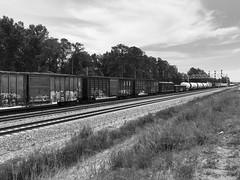 Lakeside, Virginia (seanrobertson02) Tags: virginia richmond lakeside csx freighttrain railroad railway train