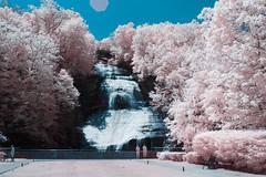 Shequaga Falls 2018 (-Dons) Tags: blackandwhite newyork unitedstates waterfalls infrared ny usa montourfalls shequagafalls falls water tree park