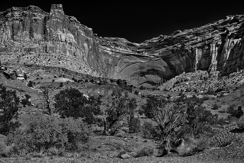 Formations and Etching Across the Cliff Walls of the Waterpocket Fold (Black & White, Capitol Reef National Park)