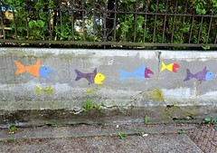 Plenty of Fish (knightbefore_99) Tags: vancouver eastvan city canada cool coast west urban awesome fish graffiti poisson pescado colour wall street plenty sea
