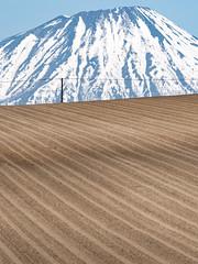 蝦夷富士山|Hokkaido (里卡豆) Tags: 北海道 日本 hokkaido jp olympusem1markii em1ii olympus40150mmf28 虻田町