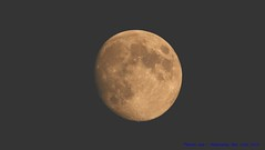 Waxing Gibbous Flower Moon......... (law_keven) Tags: moon luna themoon photography astrophotography flowermoon waxinggibbousmoon catford london england canon