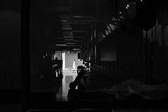 (winn s) Tags: 35mm summicron leicam2 kodak 400tx film filmphotography 50mm blackandwhite shadow streetphotography leicafilm leicam leica