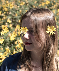 DSC_4364 (capteurdesensibilite) Tags: parcvalmer portrait coquelicot ombres fleurs