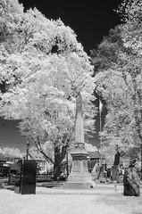 Memorial park IR (ewan.osullivan) Tags: bw ir infrared tree tripod r72 blackandwhite monochrome warmemorial marblehead memorialpark