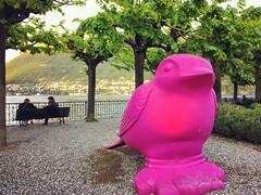 Lago di Como - Lombardia - Italia (Kristel Van Loock) Tags: lagodicomo como lake comolake lakecomo lombardia lombardy italia italy italie italien vacanza travel viaggio travelphotography viaggioinitalia cernobbio