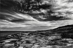 View of a Cliff Top (Peter Polder) Tags: australia bw bay clouds seascape monochrome mono ocean overcast rocks sydney skyline sea urban