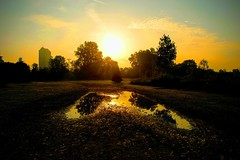 Sundrop (Preoccupine) Tags: columbus ohio metro park scioto audubon puddle sunrise skyline city water sun landscape outdoor reflection