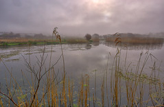 Atmosphere (Through Bri`s Lens) Tags: northdevon croyde mist misty ruda brianspicer reflections canon5dmk3 canon1635f4