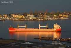 Federal Alster (gus3221) Tags: federalalster fednav ship superior chs duluth grain stormlight