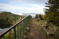 Bèlvédère de roche d'Antre (leon.vaillat) Tags: banc chien montagne brume barrière