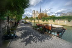 On the banks of the Seine (marko.erman) Tags: seine river paris france notredame cathedral church monument architecture beautiful iledelacité island banks promenade boats trees shadow sun sunny sony wideangle pov unesco worldheritagesite