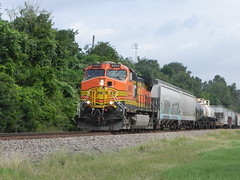 BNSF 4904 Rolls by the Park (Cole Boyer) Tags: bnsf bnsfrailway bnsftomball bnsfdash9 bnsftrain train trains tracks rails trees forest grass park tomball tomballtx texas railfanning ge gedash9 teahou bnsfteahou