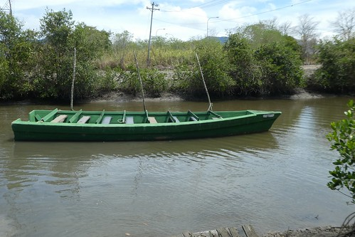 Tourist Boat Caroni River