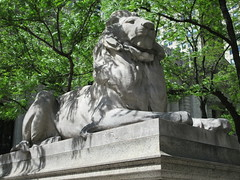 2019 Lion Under Shady Branches New York Public Library 8758 (Brechtbug) Tags: 2019 lions new york public library statues lion hanging shadows 42nd street 5th avenue nyc 05182019 may springtime soon spring weather eventually animal cat feline statue sculpture art cats ave st gargoyles gargoyle reclining repose resting facade stairs front entrance