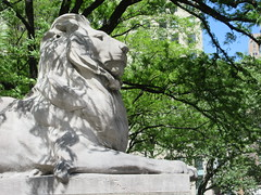 2019 Lion Under Shady Branches New York Public Library 8756 (Brechtbug) Tags: 2019 lions new york public library statues lion hanging shadows 42nd street 5th avenue nyc 05182019 may springtime soon spring weather eventually animal cat feline statue sculpture art cats ave st gargoyles gargoyle reclining repose resting facade stairs front entrance