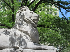 2019 Lion Under Shady Branches New York Public Library 8753 (Brechtbug) Tags: 2019 lions new york public library statues lion hanging shadows 42nd street 5th avenue nyc 05182019 may springtime soon spring weather eventually animal cat feline statue sculpture art cats ave st gargoyles gargoyle reclining repose resting facade stairs front entrance
