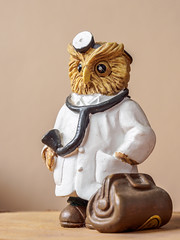 the doctor is in (wwnorm) Tags: figurines macro naturallight owls tabletop windowlight