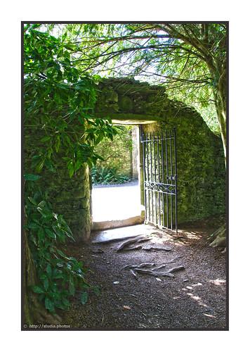Gate in Castle Grounds, Blarney Castle, Monacnapa, Blarney, County Cork, Ireland