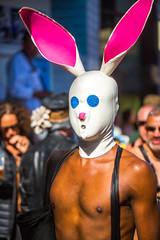 Folsom Street Fair (Thomas Hawk) Tags: america bayarea california fsf fsf2012 folsom folsomstfair folsomstreet folsomstreetfair folsomstreetfair2012 sf sfbayarea sanfrancisco usa unitedstates unitedstatesofamerica westcoast rabbit fav10 fav25