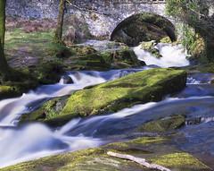 Cloghleagh Bridge (Richard Lynam) Tags: ireland wicklow water river blue landscape landscapes bridge bridges nature trees tree