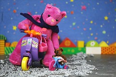 WAIT FOR ME! ||  IK HEB MAAR KORTE POOTJES (Anne-Miek Bibbe) Tags: happyteddybeartuesday teddybear teddybeer canoneos70d annemiekbibbe bibbe nederland 2019 speelgoed toy spielzeug giocattoli juguetes bringuedos jouets bear beertje beer speelgoedbeer nounours minibeer minibear fiets scooter bike bicycle kringloopwinkel thriftshop