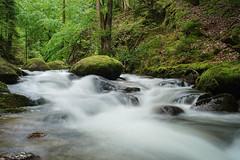 ruisseau dans la foret (joB-7) Tags: sony a7 cascade water ruisseau landscape paysage forest woods foret eau green trees tree arbres rochers rocks vert