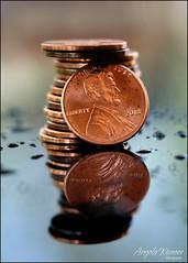 Macro Monday - Copper (angelakanner) Tags: canon70d lensbaby velvet56 manualfocus closeup macromondays copper