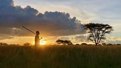 (晒晒太阳不长虫) Tags: tanzania serengeti maasai portrait melialodge