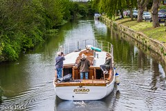 Motor Yacht Jumbo, Notts Canal (safc1965) Tags: jumbo yacht brightlingsea canal nottinghamshire