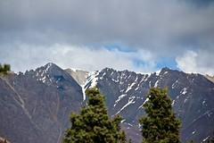 Mentasta Range Peaks (neukomment) Tags: alaska road nabesnaroad mentastamountains mountains may 2019 spring wiiderness canoneosrebelt5i 18250mmf3563dcosmacrohsm sigmalens