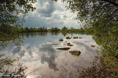IMG_8426-Edit (brianfagan) Tags: 6d brianfagan attenborough attenboroughnaturereserve brianfaganphotography canon eos nature nottingham reserve