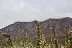 Cloudy Peaks (neukomment) Tags: alaska road nabesnaroad mentastamountains mountains may 2019 spring wiiderness canoneosrebelt5i 18250mmf3563dcosmacrohsm sigmalens