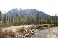 The Creek (neukomment) Tags: alaska road nabesnaroad mentastamountains mountains may 2019 spring wiiderness canoneosrebelt5i 18250mmf3563dcosmacrohsm sigmalens