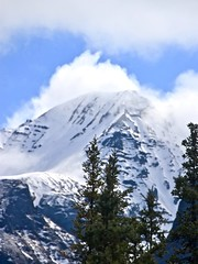 Snow Capped Peak (neukomment) Tags: alaska road nabesnaroad mentastamountains mountains may 2019 spring wiiderness canoneosrebelt5i 18250mmf3563dcosmacrohsm sigmalens