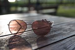 IMG_7512 (Ciupek) Tags: brodyiłżeckie wiosna woda zalew spring glases okulary
