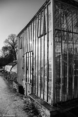 IMG_0401 (cachalo60) Tags: châteaudespères canon6d canon noiretblanc nb abandon architecture nature bretagne illeetvilaine