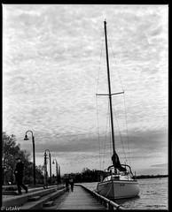 Rb67 150mm soft focus lens tmax400; ladybug 🐞 yacht (Uta_kv) Tags: sailingboat boatclub boat yacht redfilter darkredfilter tmax400 rb67 150mmsoftfocuslens