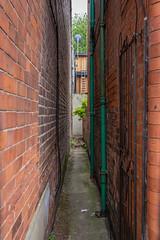 Hope Drive, Nottingham (Geraldine Curtis) Tags: hopedrive nottingham alleyway redbrick