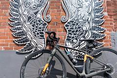 May 19 ride (chris e robert) Tags: specializedbikes specialized specializeddiverge cycling cyclinglife sony sonyphoto sonya7iii sonyfe28mm20