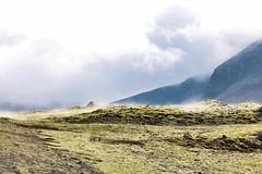 Mist over the moss (erlingurt) Tags: iceland moss mist rp eos canon landscape