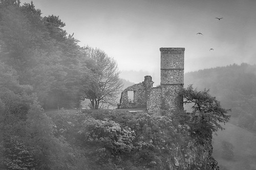 Kinnoull Hill Mist